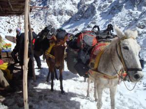 Toubkal raid à skis au Maroc